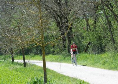 Ciclocolli_Storica_2018_Domenica Giro_195